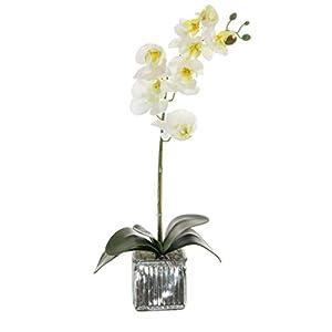 Home Decor 4 U Orquídea artificial, orquídea polilla, planta artificial, orquídea con maceta de cromo cubo, centro de…