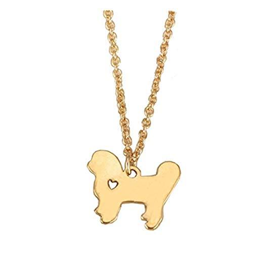 GYKMDF Bichon Frise collar de perro, collar de mascota, collar de animal
