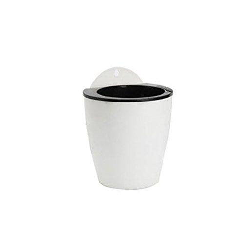 ZHOUBA Pot de fleurs mural créatif à suspendre - Absorbe l'eau - Décoration d'intérieur - Taille S (blanc + noir)