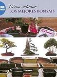 Como cultivar los mejores bonsais (Como Hacer)
