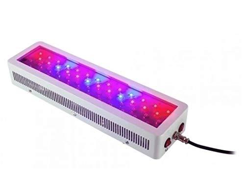 Greenception - Panel LED (100 W)