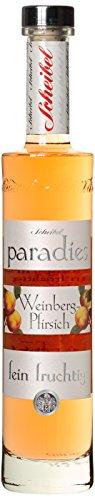 Scheibel Paradies Weinberg-Pfirsich, 1er Pack (1 x 350 ml)