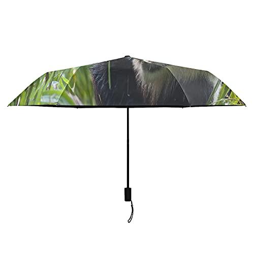 Paraguas para mujer Oso panda gigante hambriento comiendo bambú Paraguas coloridos Portátil Ligero A prueba de viento Paraguas de viaje A prueba de viento Sol Lluvia perfecto Paraguas plega