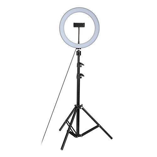 Fealay 26cm Studio Live Led Ring Light With Phone Holder 120cm Ring Light Kit Foldable Tripod Kit Adjustable 360 Rotation for Phone Selfie Light Beauty Photograph