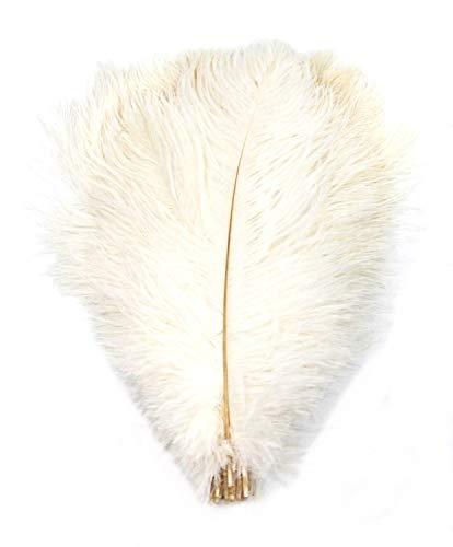 PANAX Echte XL Straußenfedern in Weiß - ca. 25-30cm Federnlänge / 20 Stück EXTRA GROß - 13 Farbvarianten, Ideal zum Basteln, für Fasching, Karneval, Kostüme, Dekorationen, Hochzeiten.