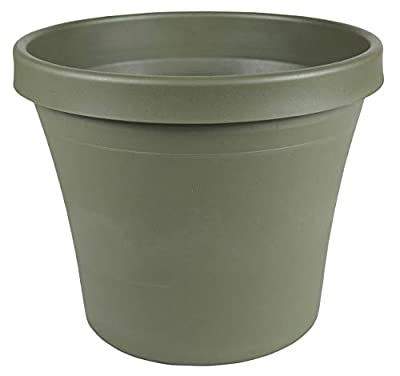 "Bloem Terra Plastic Pot Planter 6"" Living Green"