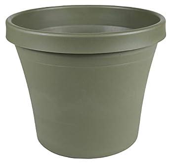 Bloem Terra Pot Planter 8  Living Green