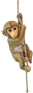 Best monkey bars for garden Reviews