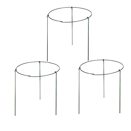 rescozy (Pack of 6) Small Garden Plant Support Rings, 7.9' Wide x 11' High, 3 Legs