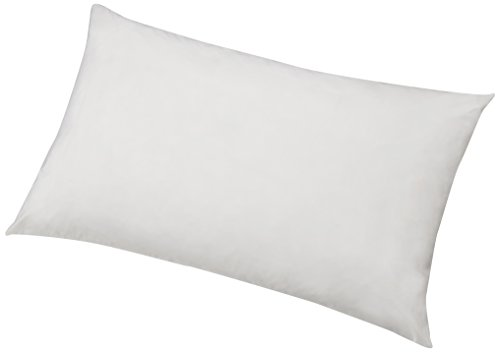 Amazon Basics - Protector de almohada hipoalergénico, blanco, 50 x 80 cm - 2 Unidades