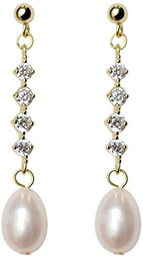 Earring Simple and fashionable, versatile, personalized earrings, exquisite fashion, popular, classic women's long e