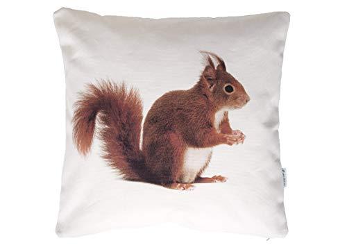 Kleines Eichhörnchen Kissen, Baumwolle und Leinen, 30x30 cm, inklusive Innenkissen mit Federfüllung, genäht mit Reißverschluss, Tier Motiv, Deko, Sofa, Garten