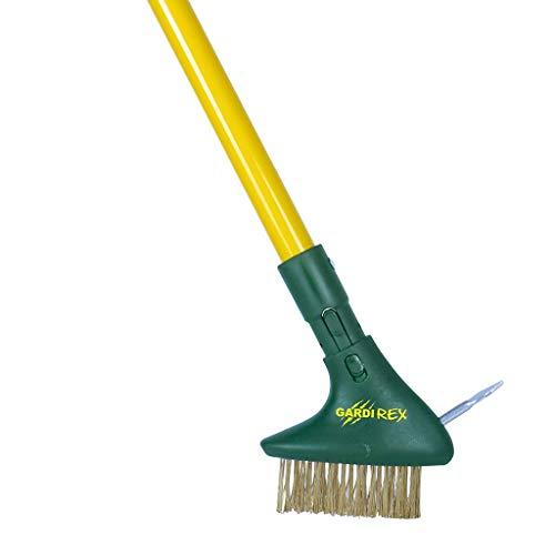 Gardi Rex Ersatzkopf Unkrautbürste | Fugenbürste mit Metallsporn | Fugenkratzer als Alternative zum Unkrautvernichter oder Unkrautstecher