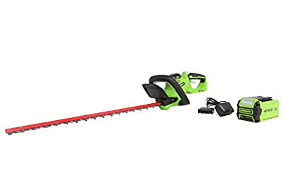 "Greenworks 40V 24"" Hedge Trimmer (1"" Cutting Capacity), 2Ah USB Battery and Charger Included HT40B212"