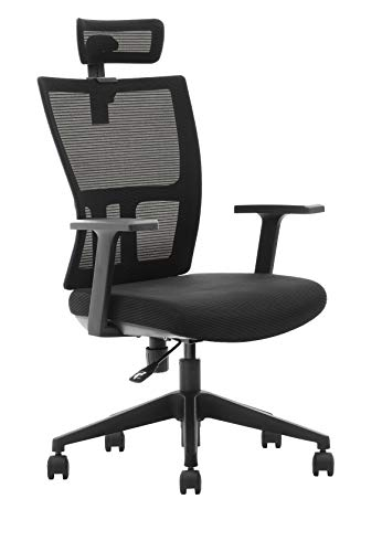 DeckUp Iris High Back Executive Mesh Office Chair (Black, BIFMA Certified, 3 Years Warranty)