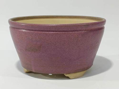Maceta para Bonsai 17.5 x 8.5 cm