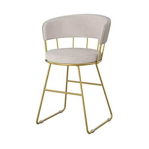 HLY Sedia posteriore , Sedia da pranzo Sedia da trucco Sedia da toeletta moderna e minimalista Sgabello Sedia con schienale per camera da letto Durevole