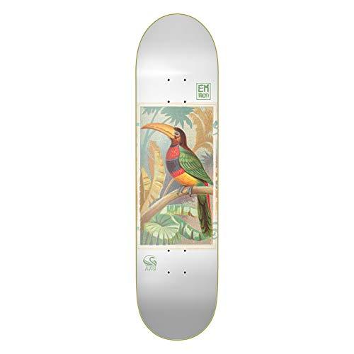Emillion Skateboard Deck Avis Toucan Bird 8.25