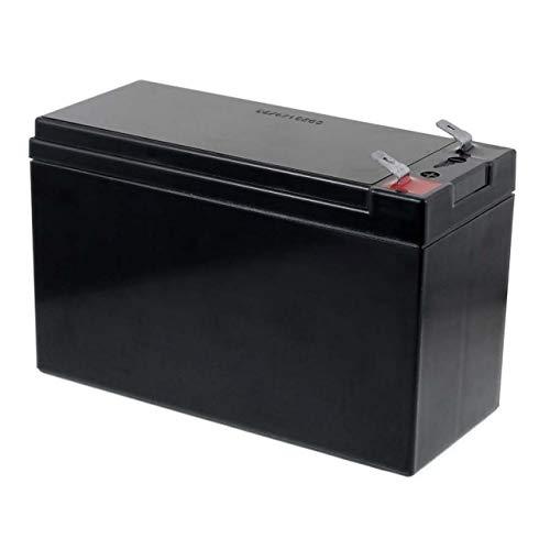FIAMM AGM - Batería de repuesto para FG20722 (12 V, 7,2 Ah)