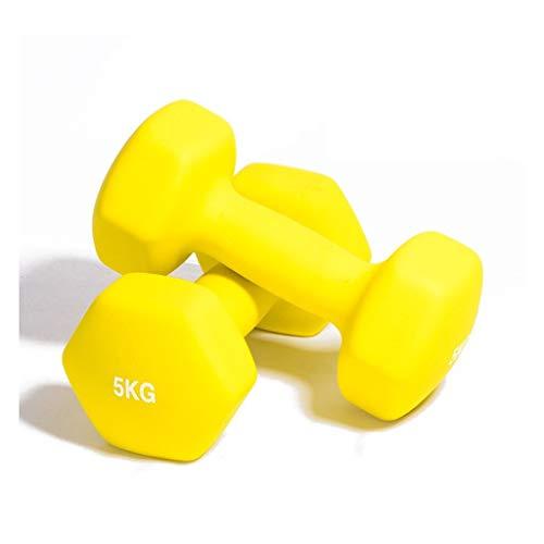 Dumbbells Set A Pair Iron Dumb Bells 1KG/2KG/3KG/4KG/5KG 10lb for Gym Home Bodybuilding Training Exercise Work Out Women (Color : 5KGx2)