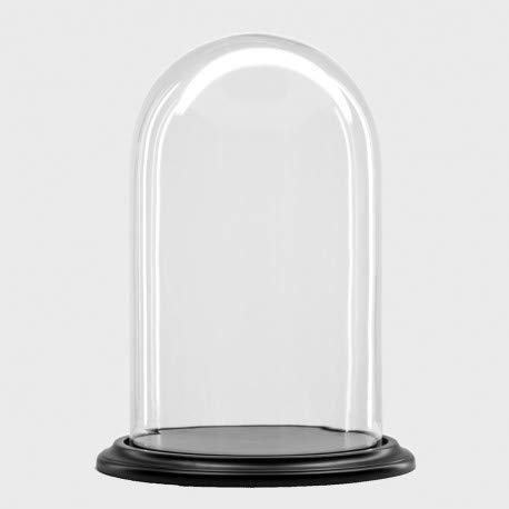 Cúpula de Vidrio/Campana de Cristal con Base de Madera Negra Ø 22...