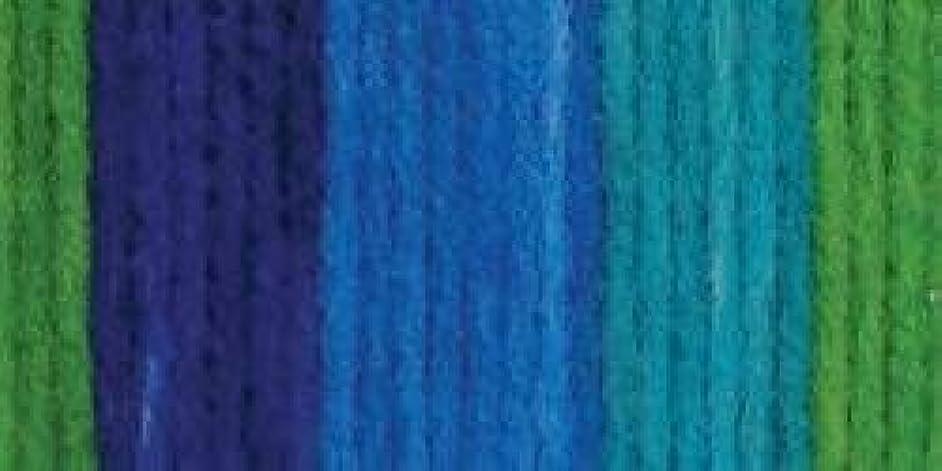 Bulk Buy: Bernat Super Value Stripes Yarn (3-Pack) Meadow 164173-73001