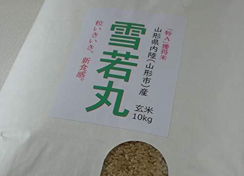【雪若丸】 2019年山形県産 10キロ 【石抜き済・一等米】