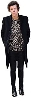 Harry Styles (2013) Life Size Cutout