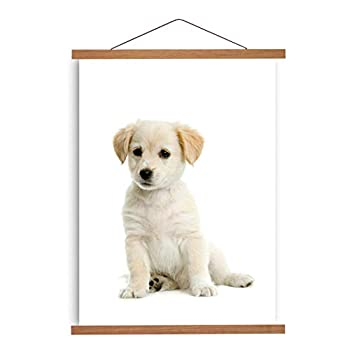 Magnetic Poster Hanger Frame Wooden Holder for Hanging Pictures Artwork Drawings Paintings Photos Maps Wall Art Portraits Natural Teak Wood-12inch