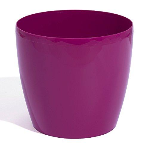 TERRA Prosperplast Coubi 5900134100 Fuchsia Plastique Pot 15 cm