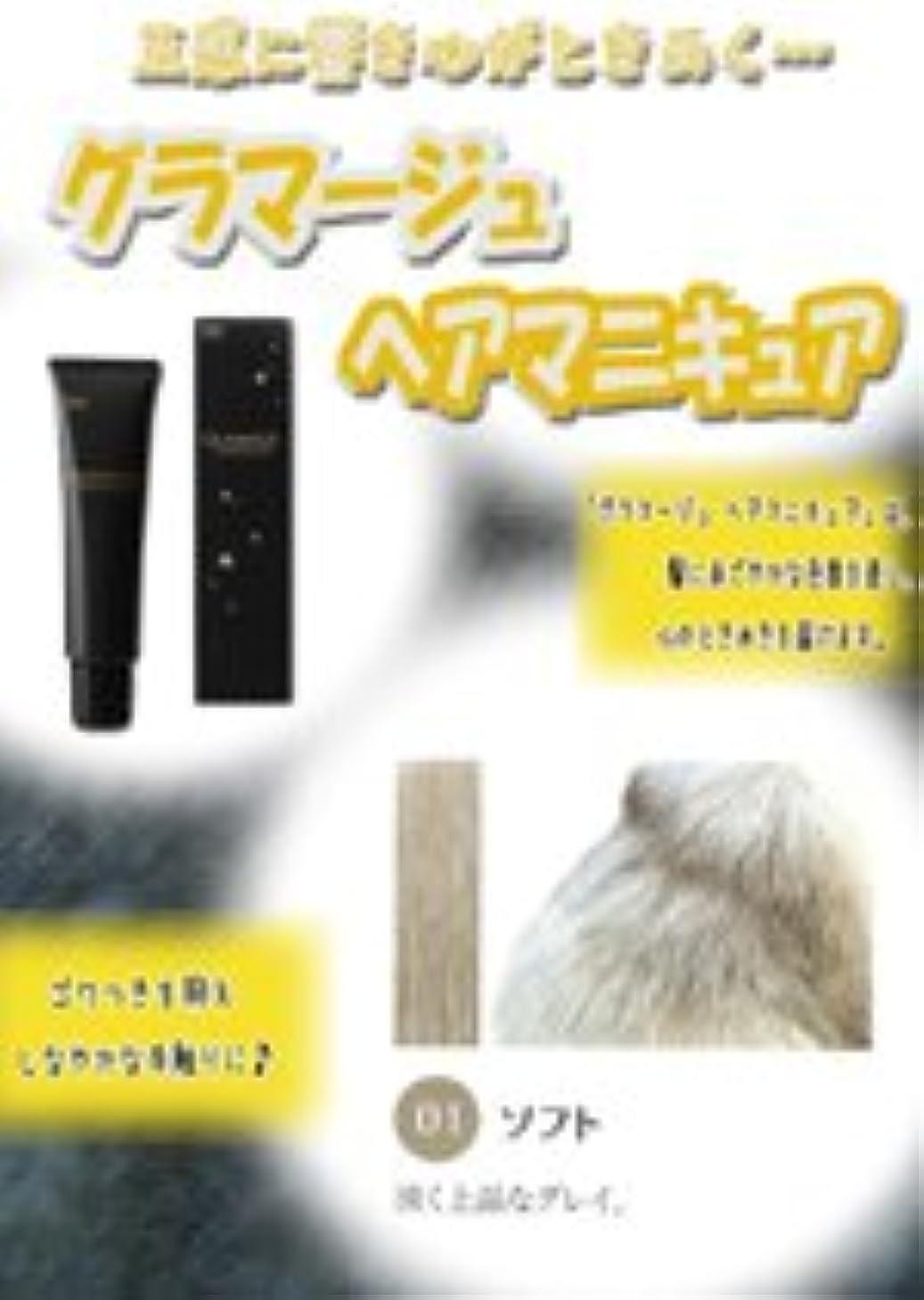 宴会愛人石HOYU ホーユー グラマージュ ヘアマニキュア 01 ソフト 150g 【モノトーン系】