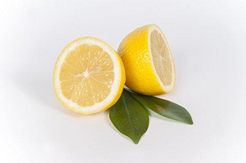 Zitronen frisch unbehandelt, 5 er Packung