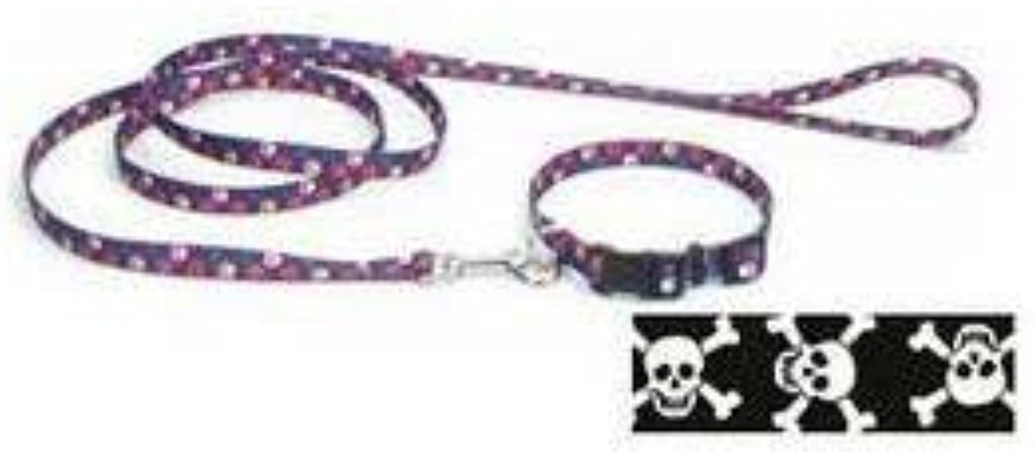 Coastal Pet Products DCP464SKZ Nylon Pet Attire Patterned Dog Training Leash, 5 8Inch by 4Feet, Skulls