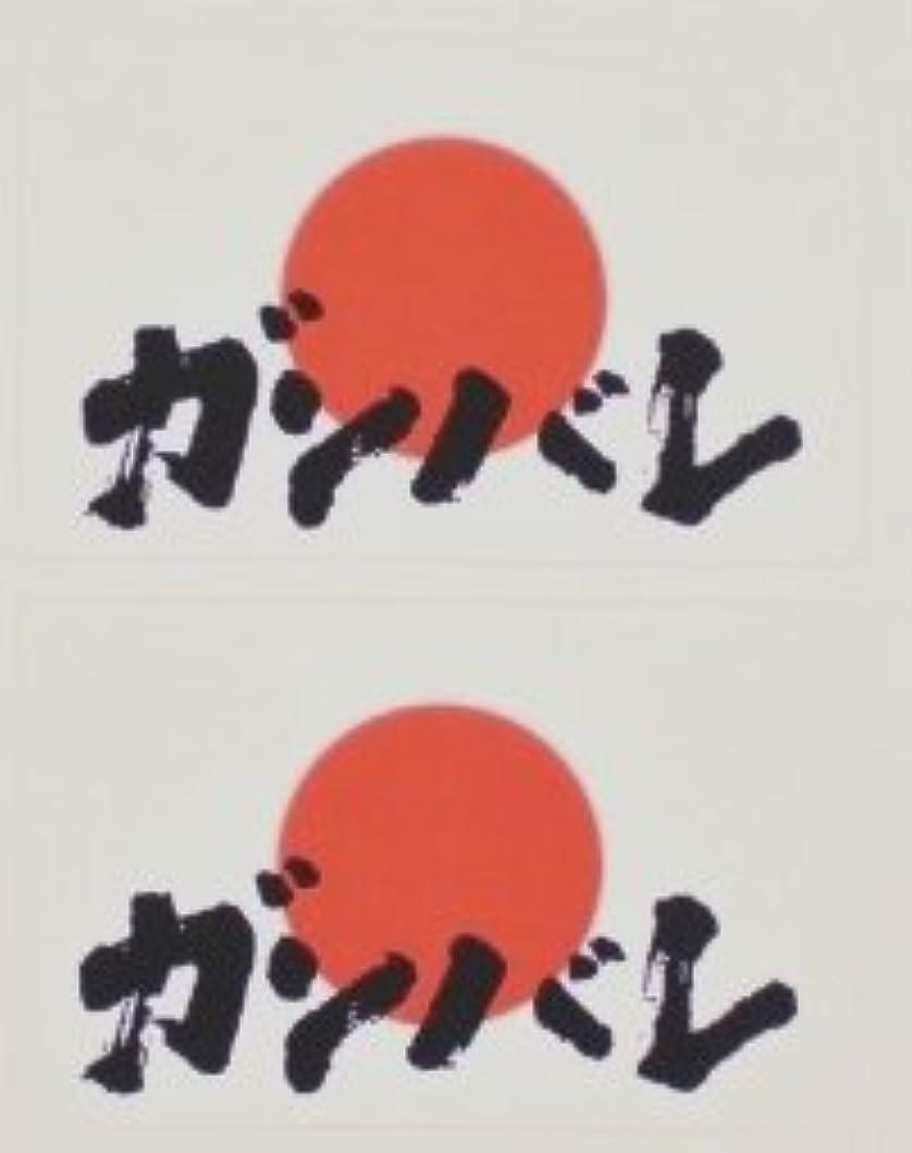 検体ファランクスホイール日の丸 【ガンバレ】(日本国旗)★フェイスシール【応援(サポーター)】/1シート2枚組
