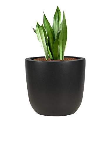 Pflanzwerk® Pflanzkübel Cup - Blumentöpfe Übertöpfe 51cm Ø ANTHRAZIT *Frostbeständige Blumenkübel* *UV-Schutz* *Deutsche Pflanzenkübel Qualität*