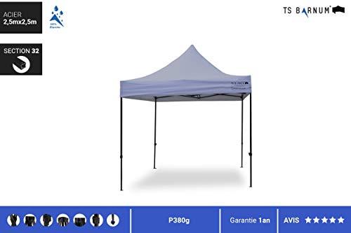 TS Barnum paviljoen van staal #32 (opvouwbare tent – paviljoen – opvouwbaar – parasols, jaloezieën en luifels, tuinmeubelen) 2.5m x 2.5m grijs.