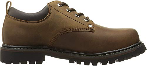 Top 10 best selling list for skechers mens tom cats lace up flat shoes