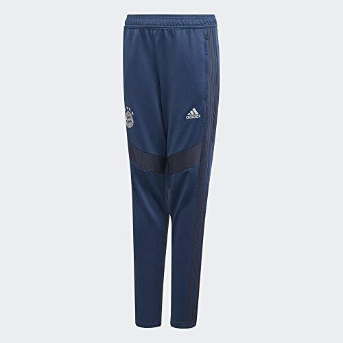 adidas Jungen FCB Tr PNT Y Hose, braun/blau, 152 (11/12 años)
