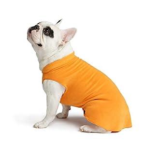 Gold Paw Stretch Fleece Dog Coat – Soft, Warm Dog Clothes, Stretchy Pet Sweater – Machine Washable, Eco Friendly – All Season – Sizes 2-33, Pumpkin Orange, Size 12