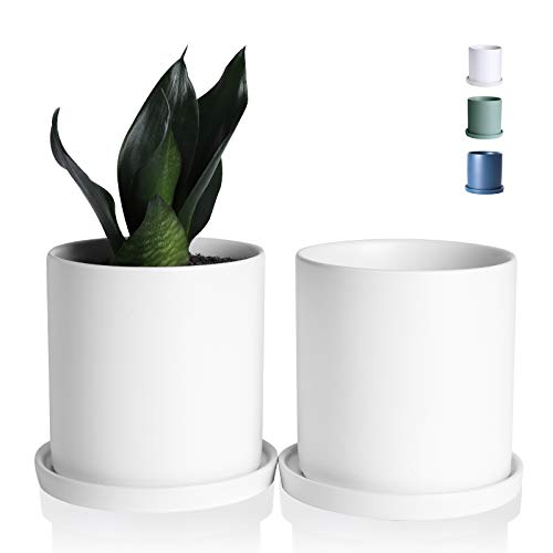 Wencassy Ceramic Flower Plant Pots- 4.5 Inch Cylinder Ceramic Modern Planters Indoor Bonsai Container with Drainage Hole and Tray - Set of 2, Matte White (Plants Not Included)
