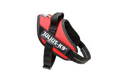 Julius-K9, 16IDC-R-M, IDC-Powergeschirr, Hundegeschirr, Größe: Mini, rot