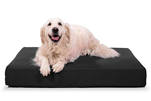 K9 Ballistics Tough Orthopedic Dog Bed Large Nearly Indestructible & Chew Proof, Washable Ortho Pillow for Chewing Puppy - for Large Dogs 40'x34', Black