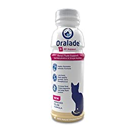 Oralade RF Support 330ml