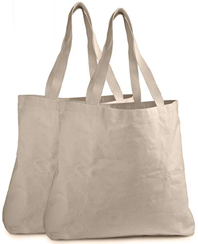 Reusable Grocery Canvas Bag - Durable Stitching with Two Sturdy Shoulder Straps to Handle Heavy Groceries. Canvas Tote Grocery Bags, an Eco-Friendly Solution for Grocery Shopping. (2-PACK | 19' x 15')
