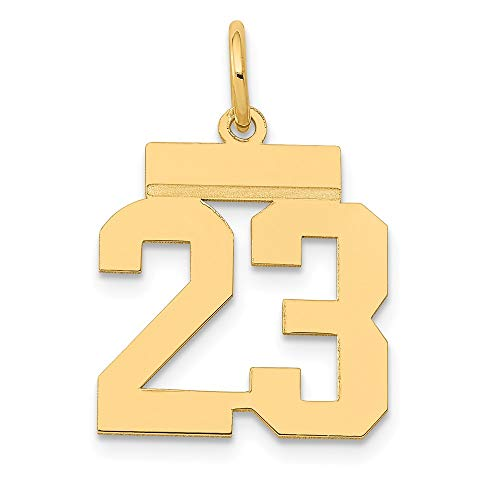14K Yellow Gold Charm Pendant Themed 23 21 mm 15 Small Polished Number