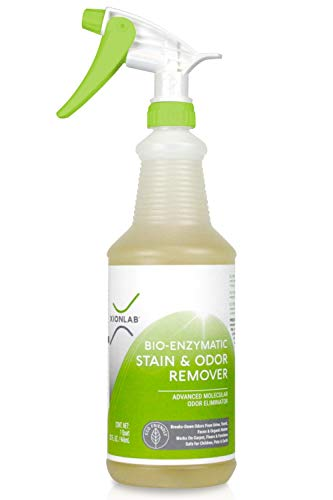 Stain Remover & Pet Odor Eliminator Spray – Urine Odor Remover for Carpet, Furniture & Upholstery – Effective Pet Urine Enzyme Cleaner Attacks the Source – Pet Carpet Cleaner Spray – Kid & Pet Safe