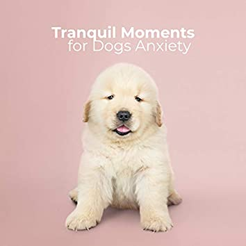 Tranquil Moments for Dogs Anxiety