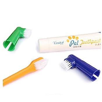 4PCS / SET Dog Kit de soins dentaires Dentifrice double face Brosse à dents Brosse à dents Professional réduit la plaque Tartare pour chiots Coffre-fort