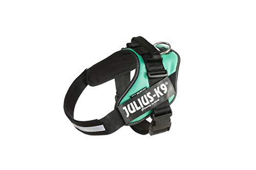Julius-K9, 16IDC-GG-1, IDC Powerharness, Dog Harness, Size: 1, Grass Green