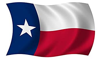 Project Thin Line Texas State Waving Wavy Flag TX Texan Vinyl Car Bumper Sticker - 12  x 7.2
